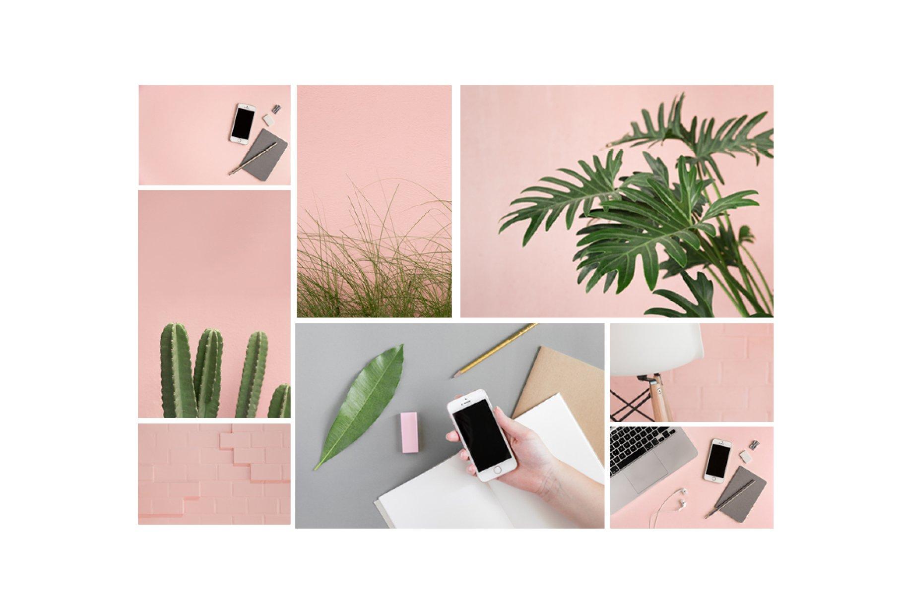 粉色柔和自适应网站界面设计苹果设备屏幕演示样机 Pink & Botanical Stock Photo Bundle插图2