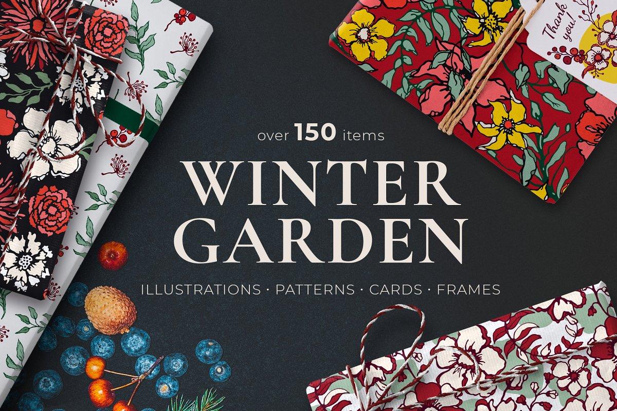 150多款时尚优雅花卉框架抽象形状手绘插画设计素材 Winter Floral Patterns & Elements插图