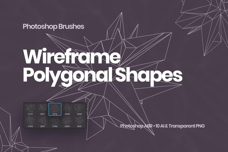 抽象科技未来线框多边形形状PS笔刷设计素材 Wireframe Polygonal Shapes Photoshop Brushes插图