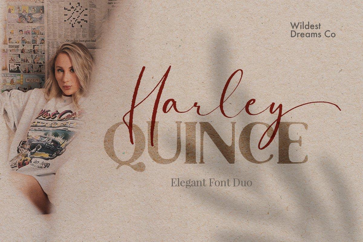 现代优雅画册海报标题Logo设计衬线手写签名字体素材 Harley Quince Elegant Font Duo插图