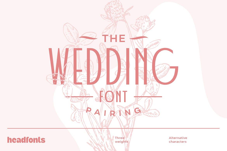 婚礼主题请柬标题Logo设计无衬线英文字体素材 Wedding Font Pairing插图