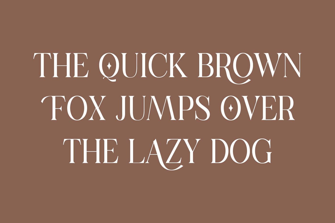 现代时尚连字海报标题徽标Logo设计衬线英文字体素材 Casanova Serif Display Font插图2