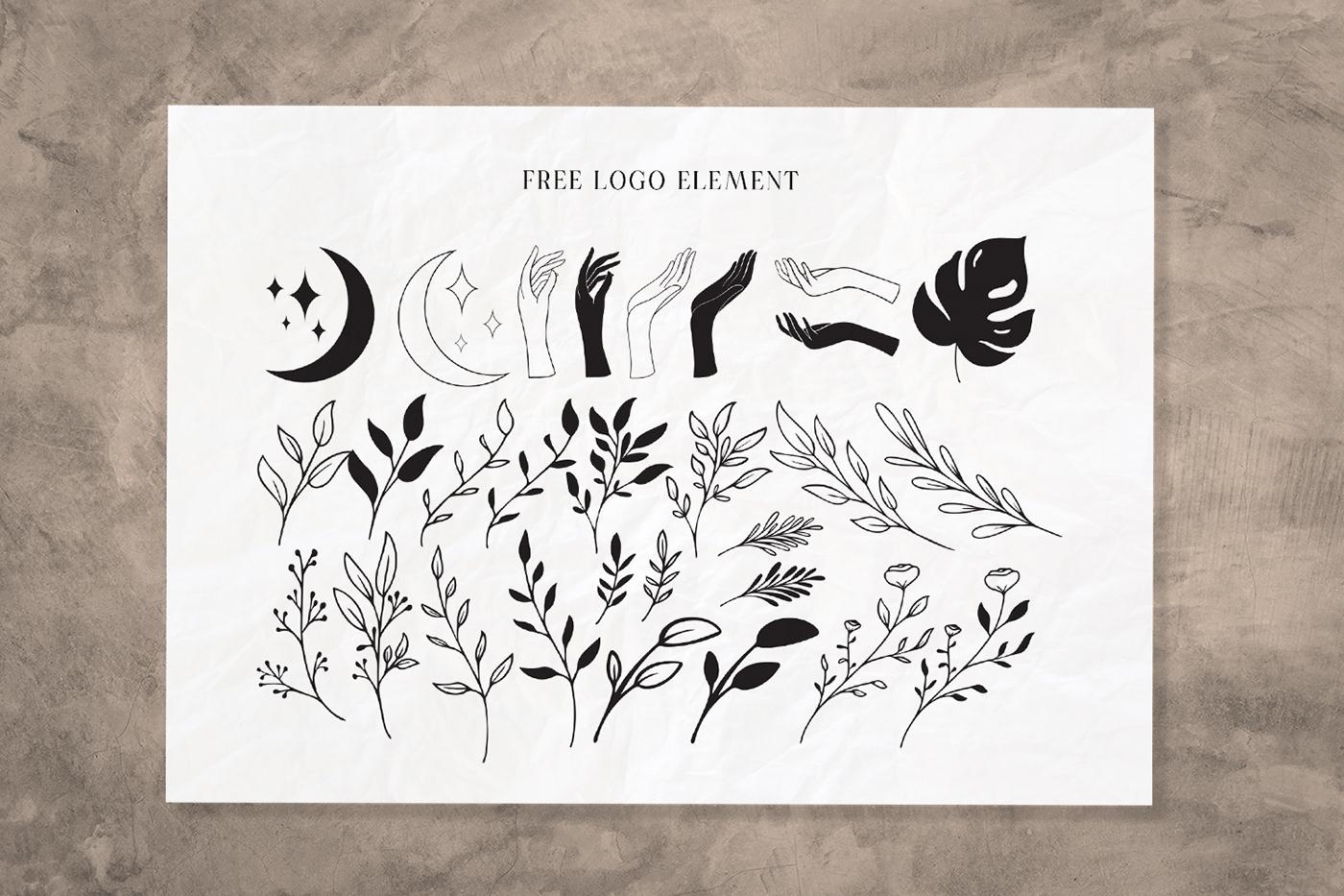 现代时尚连字海报标题徽标Logo设计衬线英文字体素材 Casanova Serif Display Font插图4