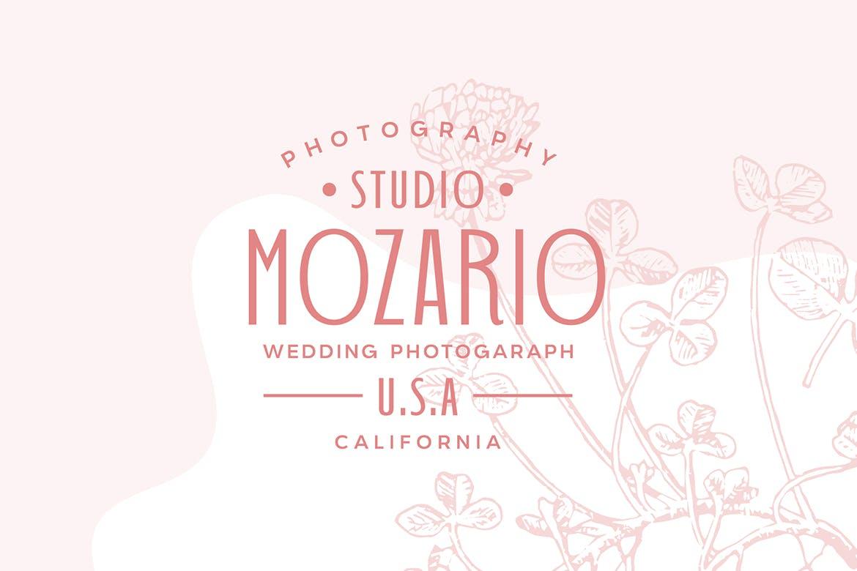 婚礼主题请柬标题Logo设计无衬线英文字体素材 Wedding Font Pairing插图7