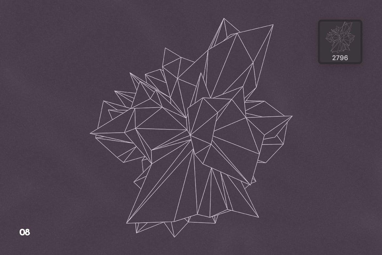 抽象科技未来线框多边形形状PS笔刷设计素材 Wireframe Polygonal Shapes Photoshop Brushes插图11