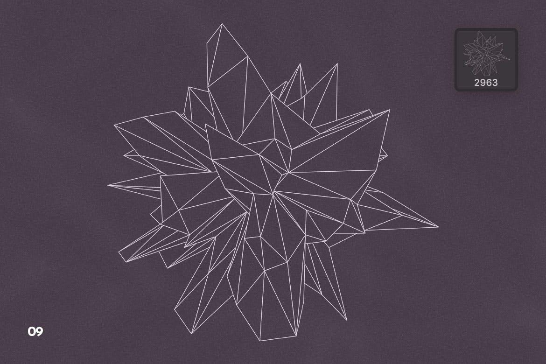 抽象科技未来线框多边形形状PS笔刷设计素材 Wireframe Polygonal Shapes Photoshop Brushes插图12