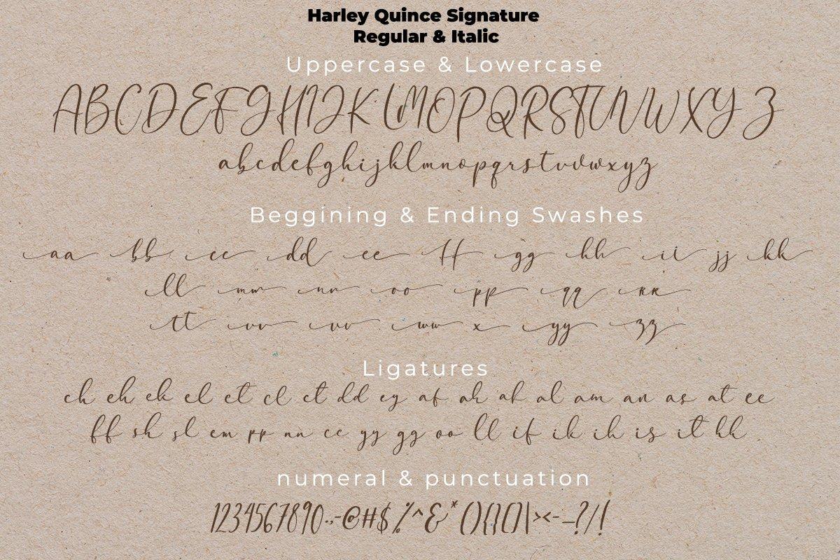 现代优雅画册海报标题Logo设计衬线手写签名字体素材 Harley Quince Elegant Font Duo插图14