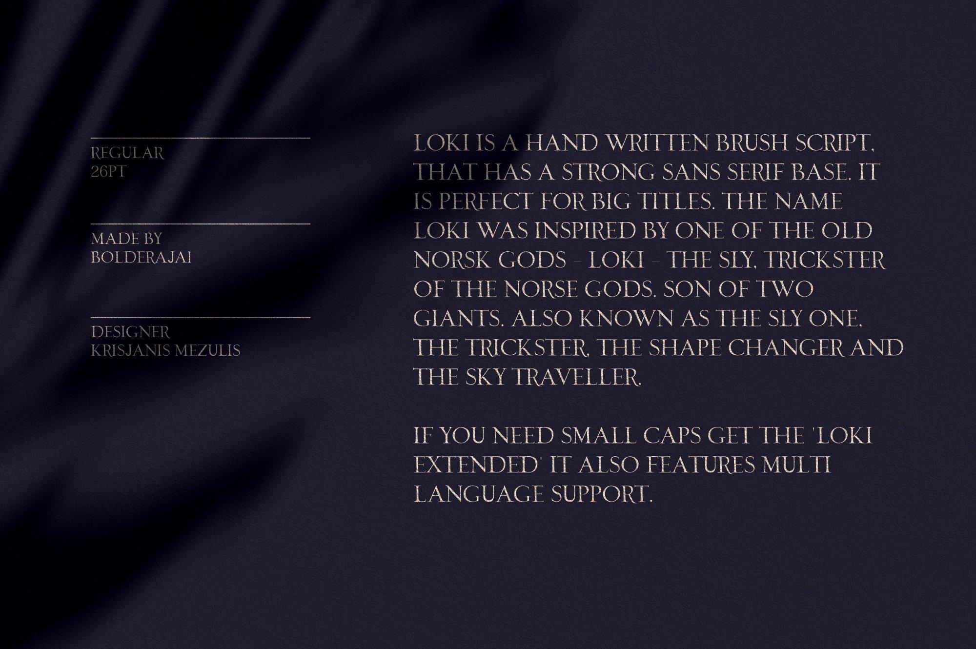 优雅轻奢时尚现代品牌Logo标题衬线英文字体设计素材 Loki – Serif Script Font插图1