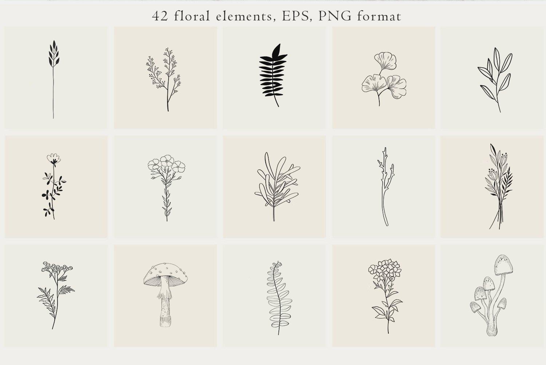 黑白线条手绘插画矢量设计素材 Floral Botanical Illustrations插图1