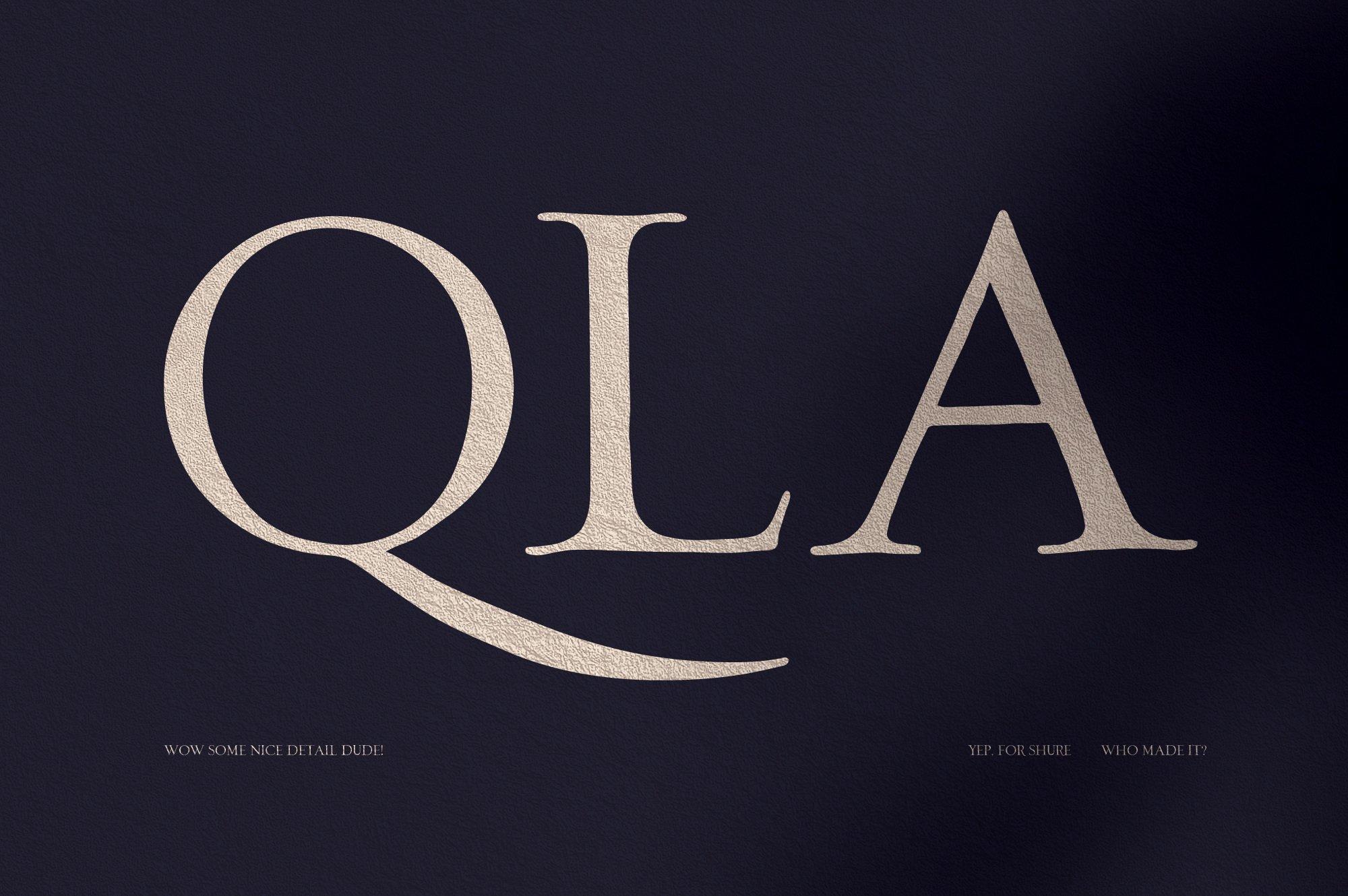 优雅轻奢时尚现代品牌Logo标题衬线英文字体设计素材 Loki – Serif Script Font插图2