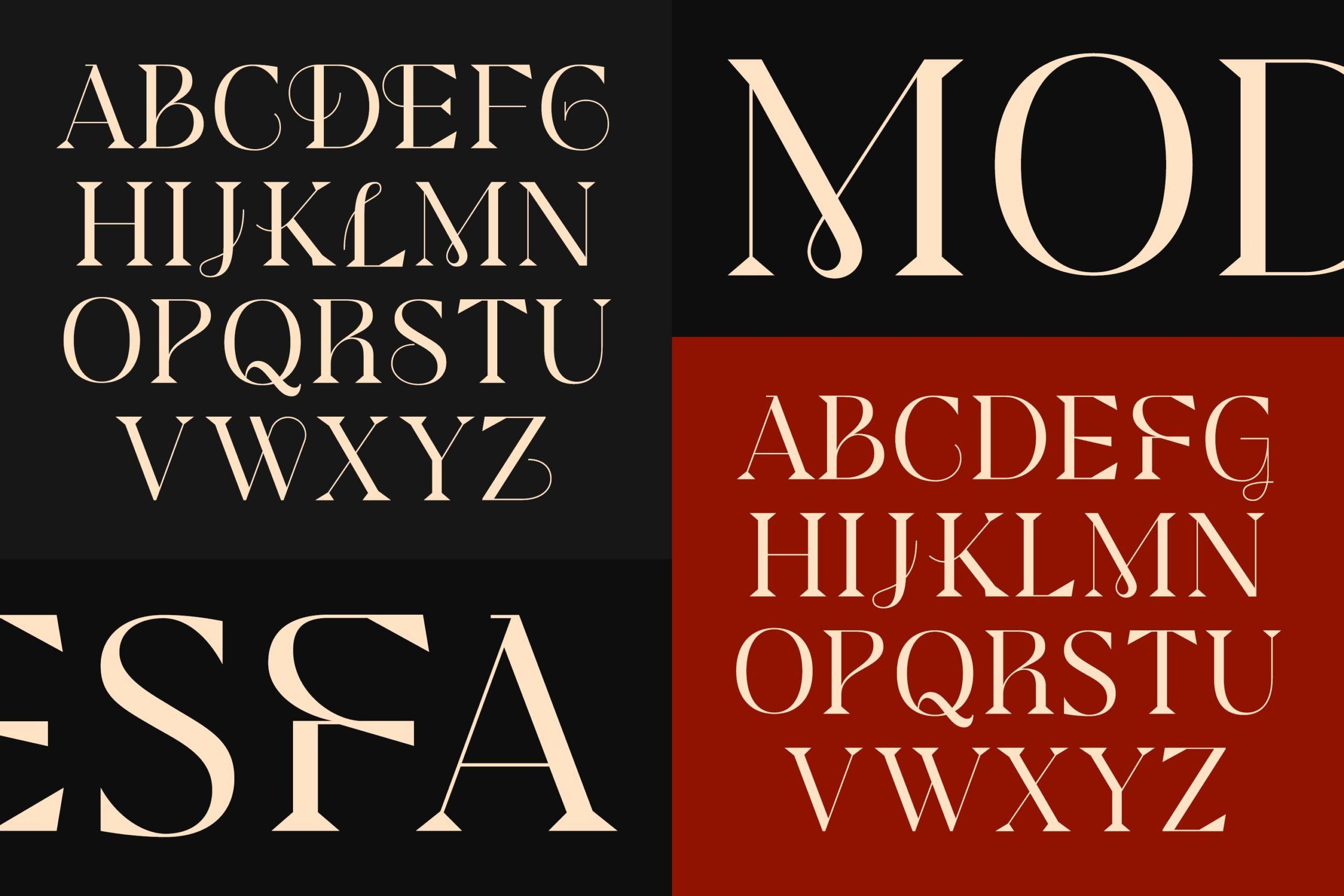 现代极简杂志画册标题徽标Logo设计衬线英文字体素材 Modesfa – Modern Display Serif插图3