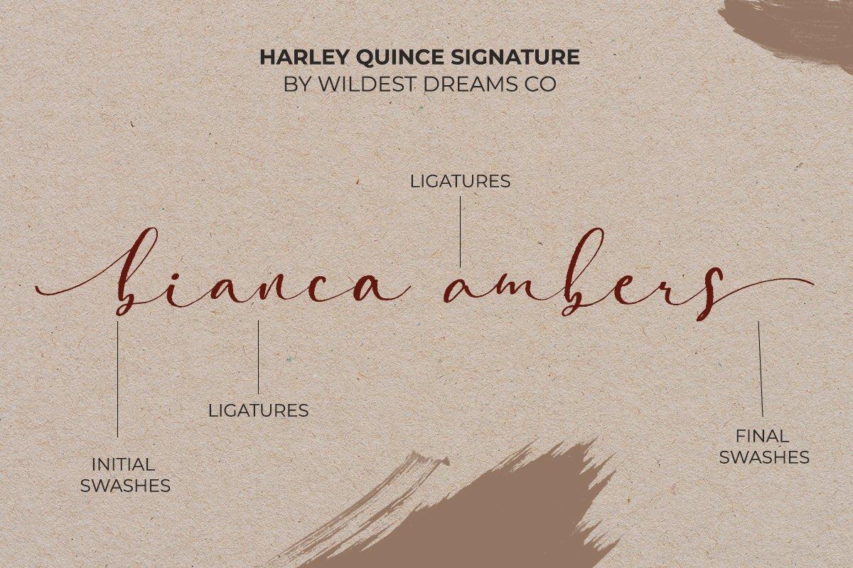 现代优雅画册海报标题Logo设计衬线手写签名字体素材 Harley Quince Elegant Font Duo插图3