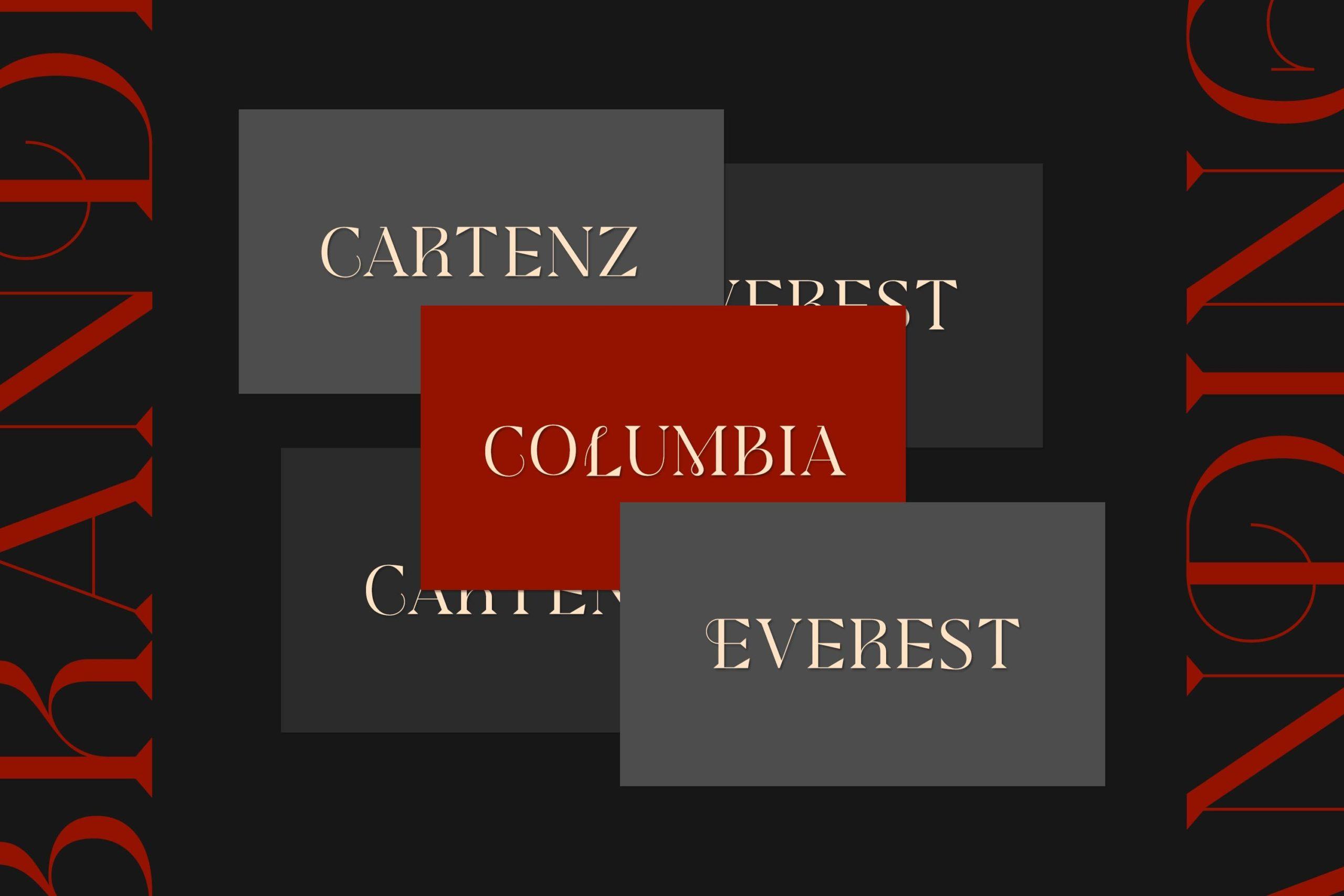 现代极简杂志画册标题徽标Logo设计衬线英文字体素材 Modesfa – Modern Display Serif插图5