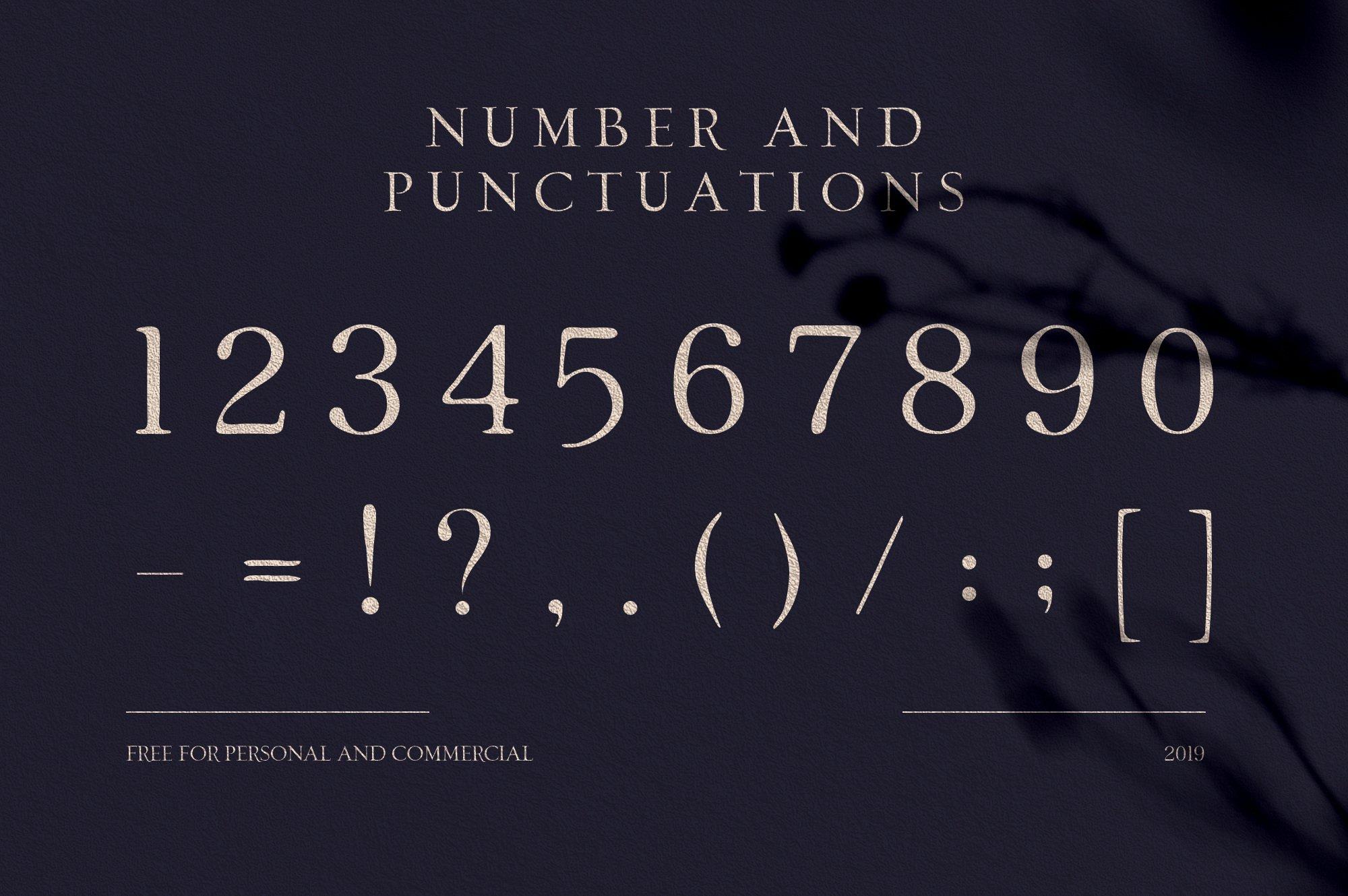 优雅轻奢时尚现代品牌Logo标题衬线英文字体设计素材 Loki – Serif Script Font插图5