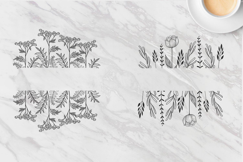 黑白线条手绘插画矢量设计素材 Floral Botanical Illustrations插图6