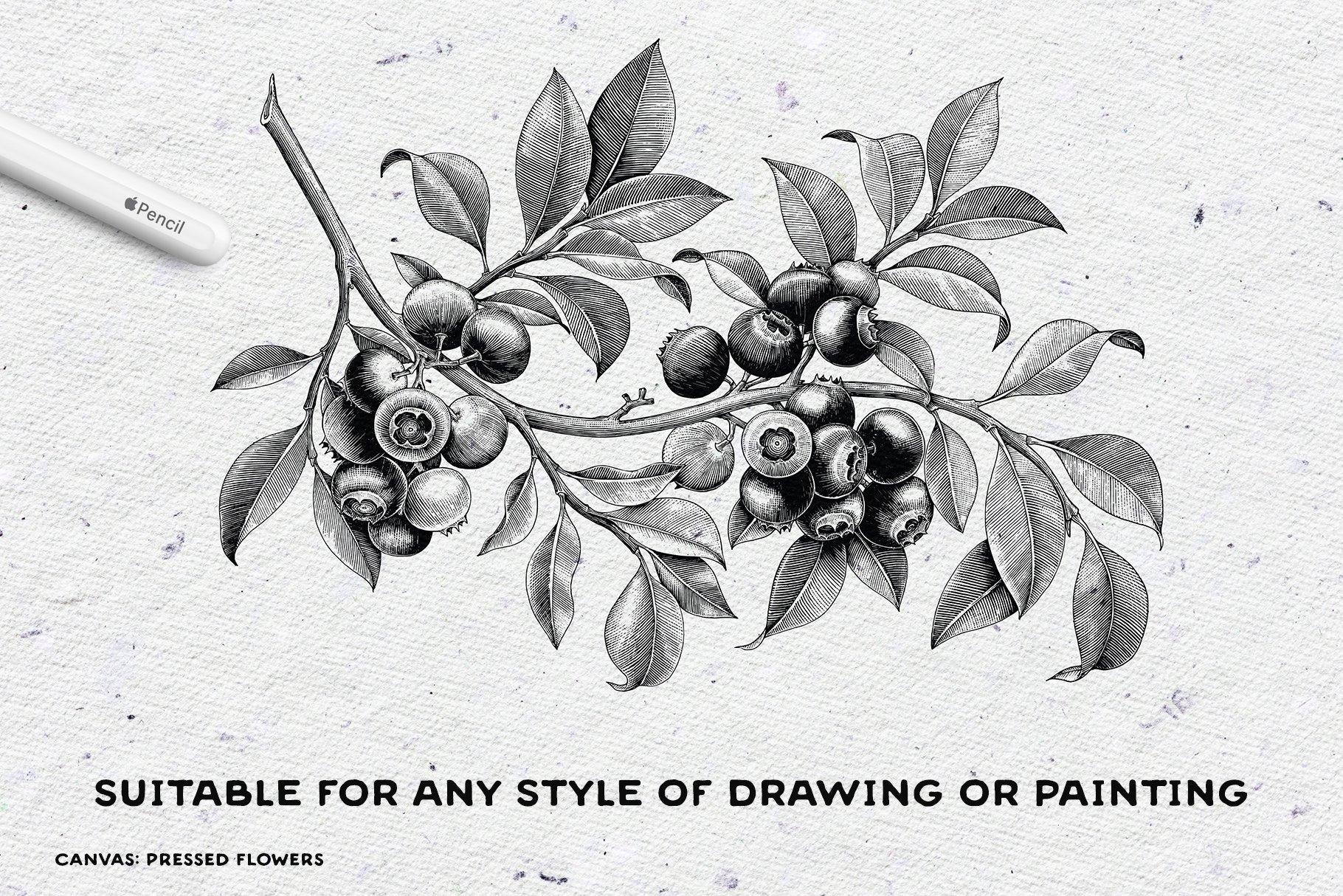 [单独购买] 17款逼真绘画画布背景Procreate纸纹理设计素材 Procreate Paper Texture Canvases插图7
