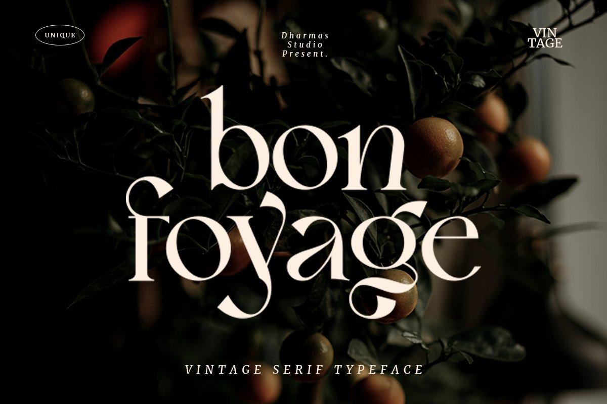 复古现代杂志标题徽标Logo字体设计衬线英文字体素材 Bon Foyage Serif Font插图
