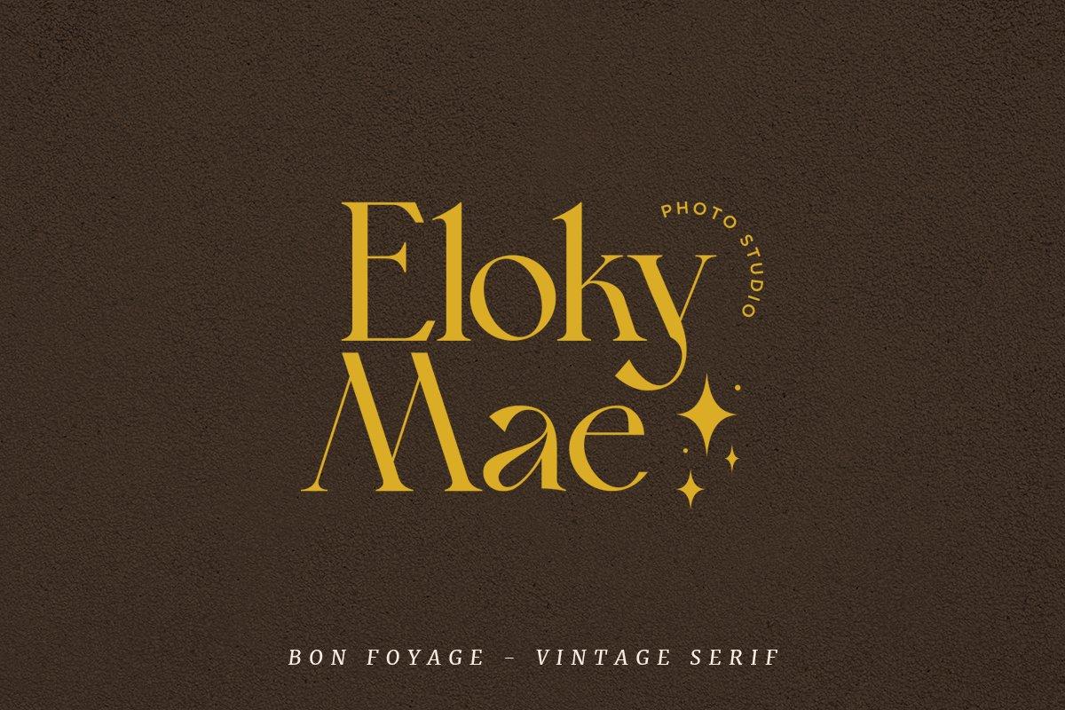 复古现代杂志标题徽标Logo字体设计衬线英文字体素材 Bon Foyage Serif Font插图9