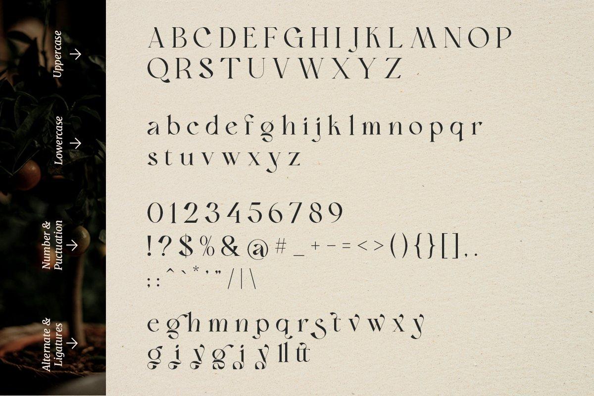 复古现代杂志标题徽标Logo字体设计衬线英文字体素材 Bon Foyage Serif Font插图13