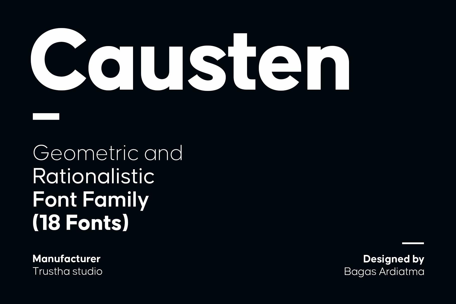 现代简约海报杂志广告Logo标题无衬线英文字体素材 Causten Font Family插图