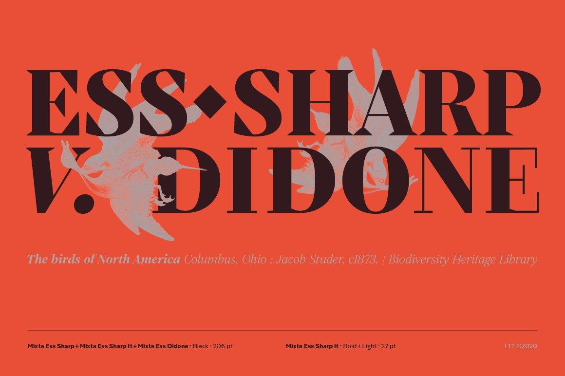 经典复古海报画册杂志Logo标题衬线英文字体素材 Mixta Ess – Intro Offer插图8
