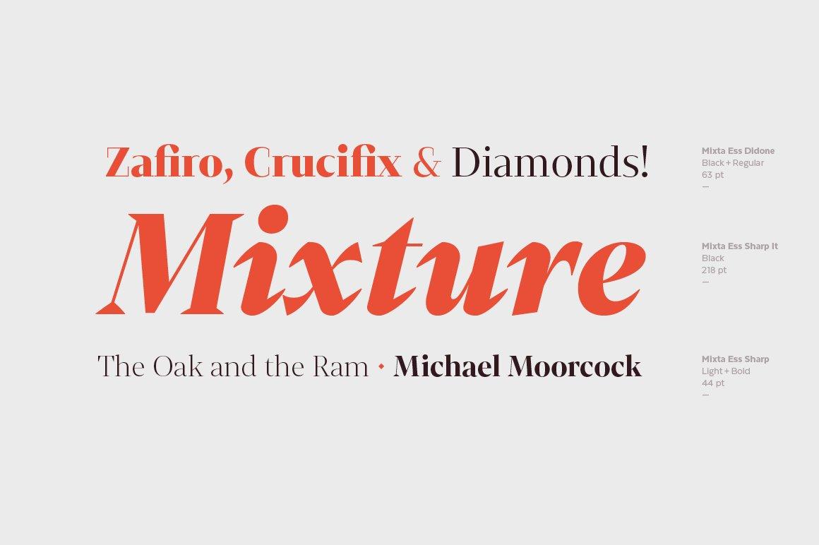 经典复古海报画册杂志Logo标题衬线英文字体素材 Mixta Ess – Intro Offer插图13