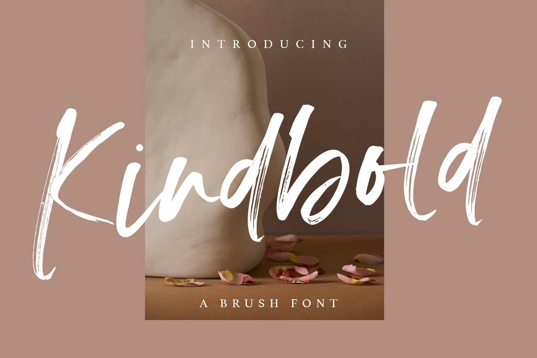 时尚优雅婚礼贺卡Logo设计手写英文字体素材 Kindbold – Brush Font插图