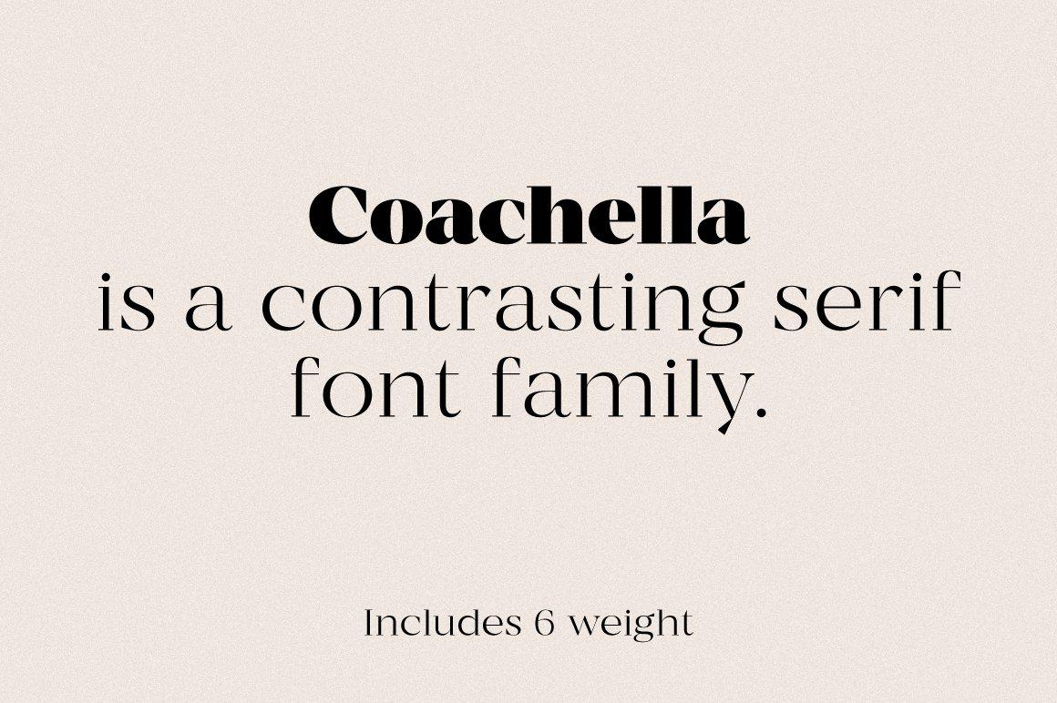 现代优雅杂志标题徽标Logo设计衬线英文字体素材 MADE Coachella Font插图1