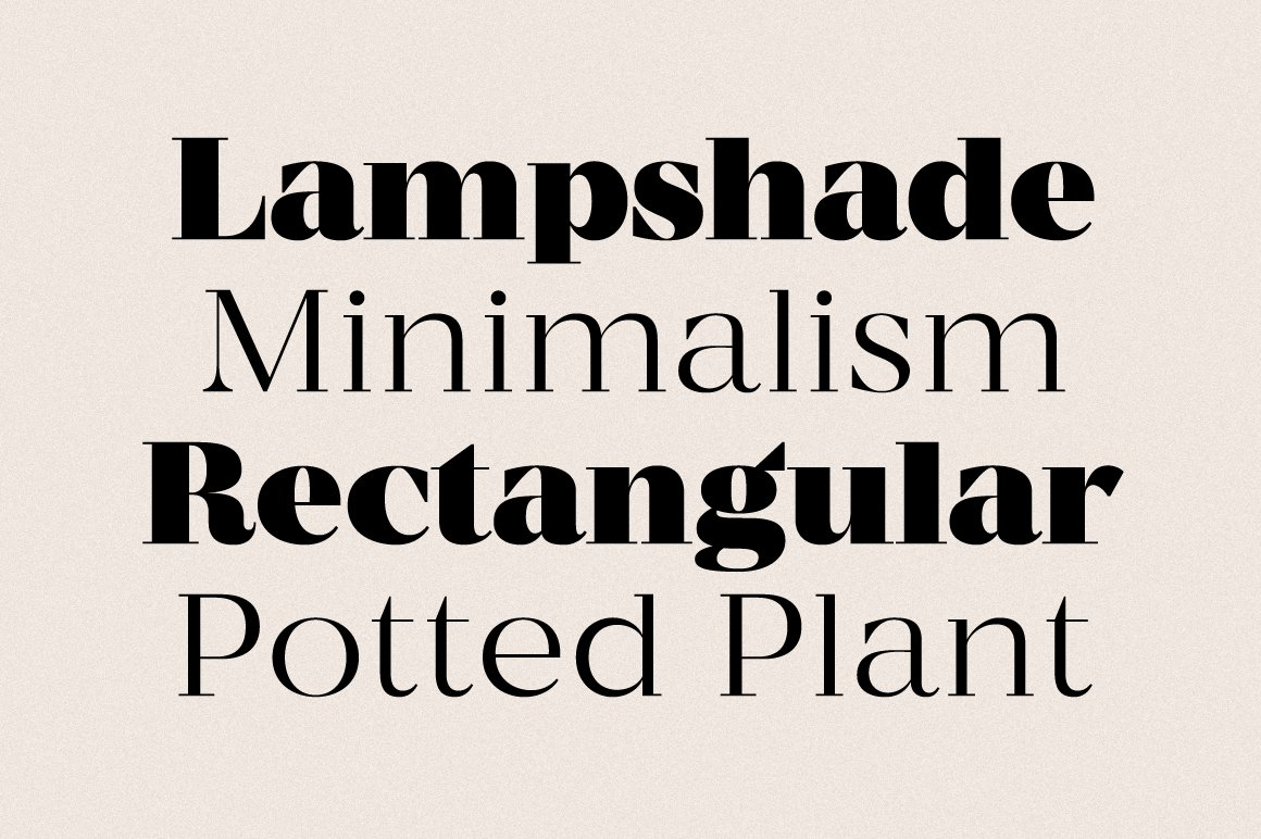 现代优雅杂志标题徽标Logo设计衬线英文字体素材 MADE Coachella Font插图7