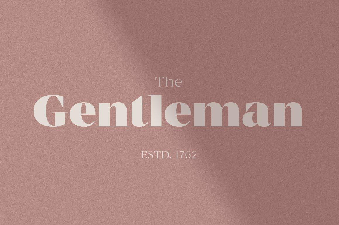 现代优雅杂志标题徽标Logo设计衬线英文字体素材 MADE Coachella Font插图9
