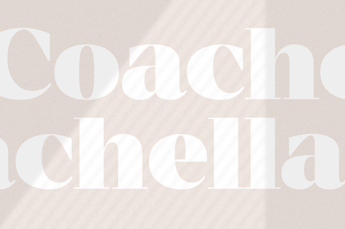 现代优雅杂志标题徽标Logo设计衬线英文字体素材 MADE Coachella Font插图20