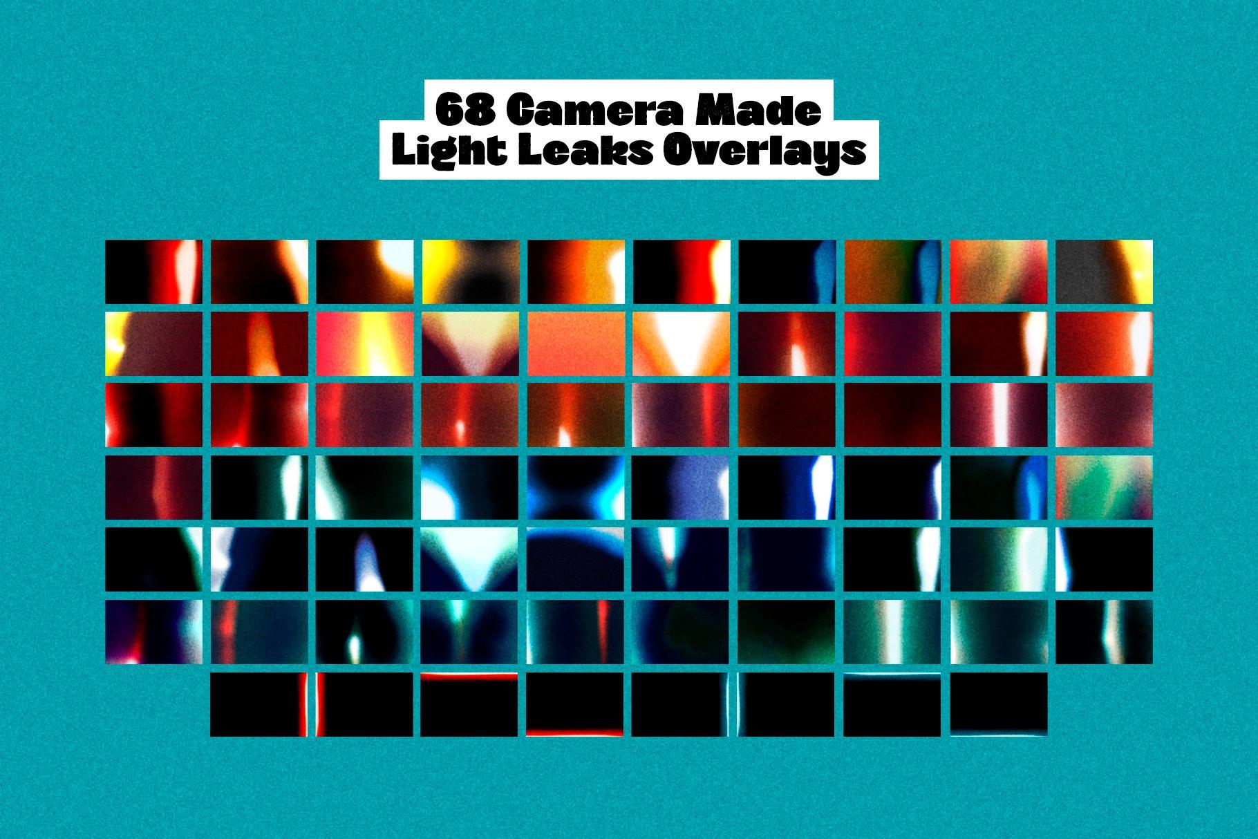 68款Lomo风格自然漏光曝光灰尘胶片边框照片叠加效果PS设计素材 Master of Lomography • Creator插图4