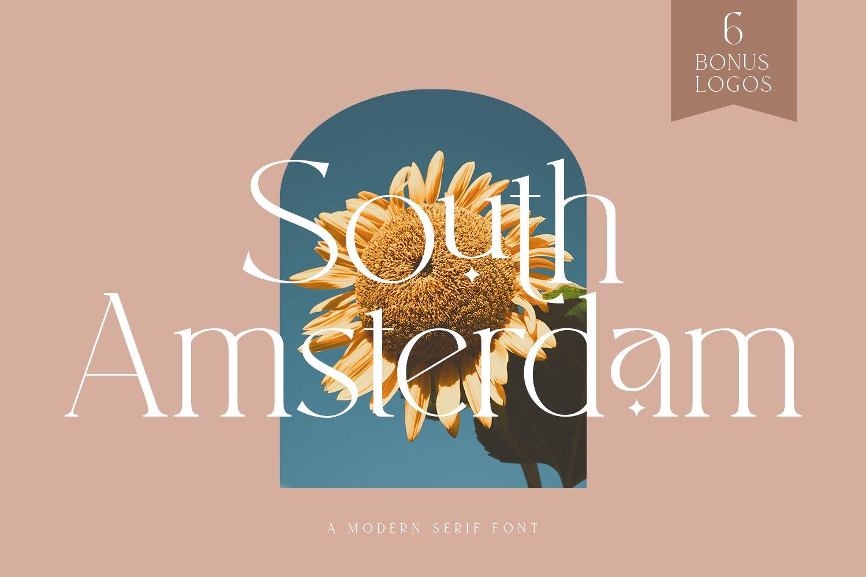 现代时尚杂志标题徽标Logo设计衬线英文字体素材 South Amsterdam Serif Font插图