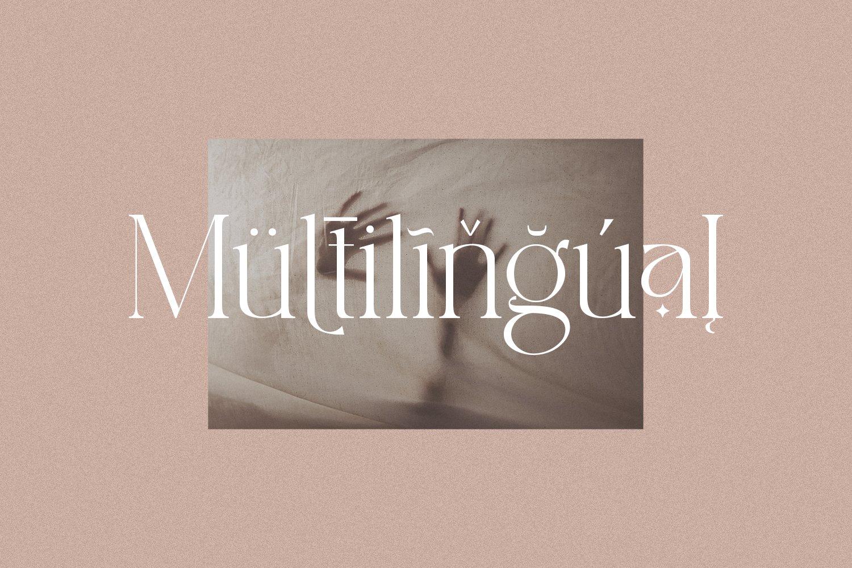 现代时尚杂志标题徽标Logo设计衬线英文字体素材 South Amsterdam Serif Font插图6