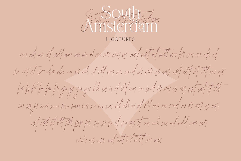 现代优雅杂志标题徽标Logo设计衬线手写英文字体素材 South Amsterdam Font Duo & Logos插图21