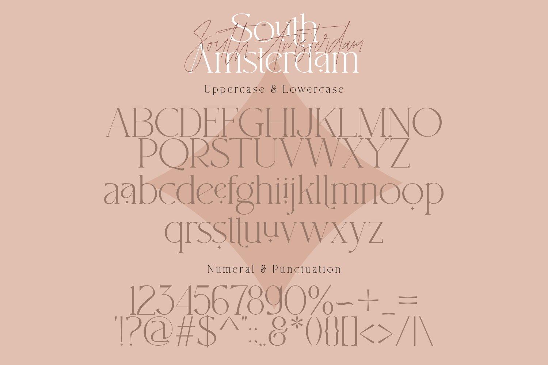 现代时尚杂志标题徽标Logo设计衬线英文字体素材 South Amsterdam Serif Font插图14