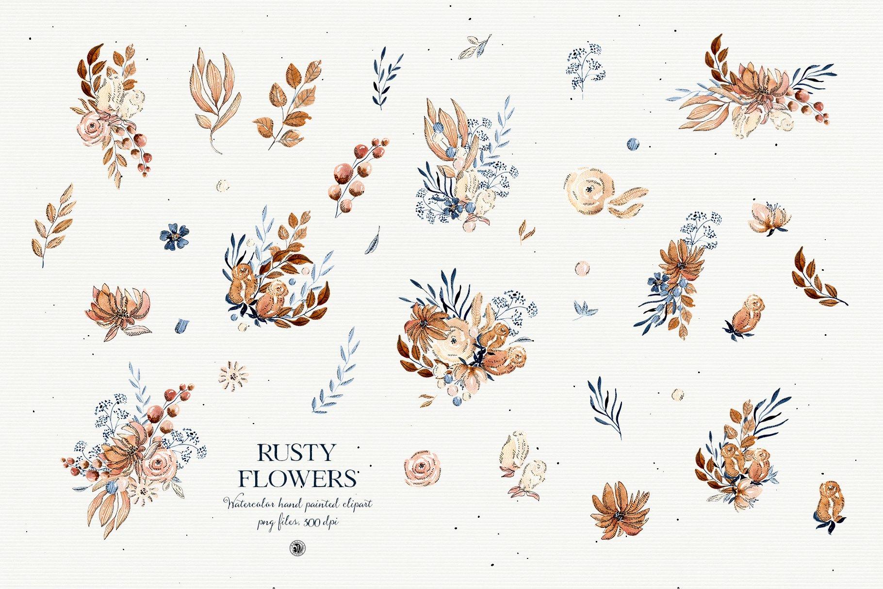 铁锈色花卉树叶手绘剪贴画PNG透明图片设计素材 Rusty Flowers – Watercolor Set插图4