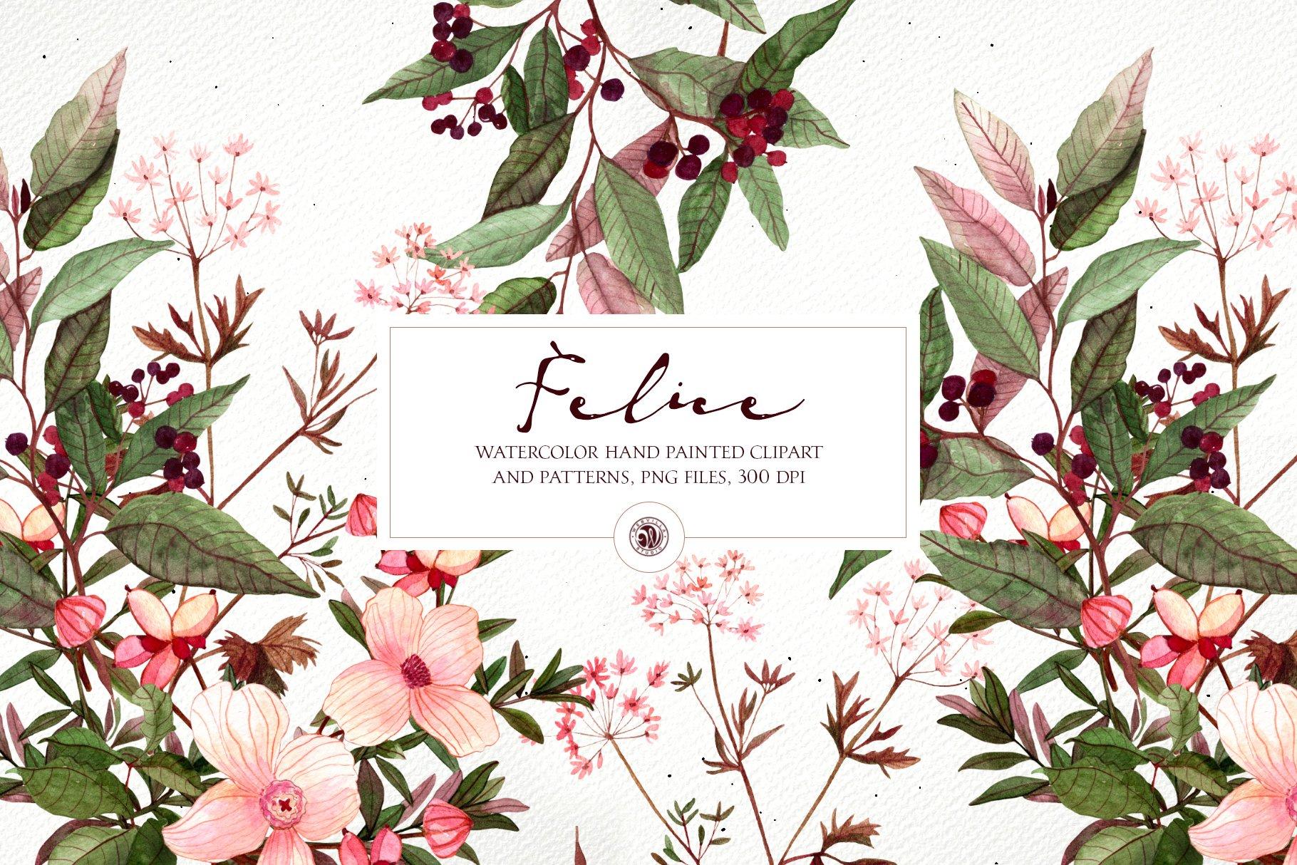 16款高清花卉花圈手绘水彩画无缝隙图案PNG透明图片素材 Felice – Watercolor Floral Set插图