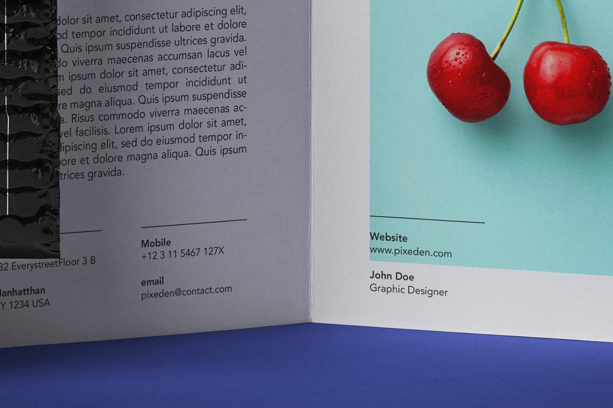 时尚品牌VI设计办公用品展示贴图样机 Stationery Psd Brochure Envelope Mockup插图4