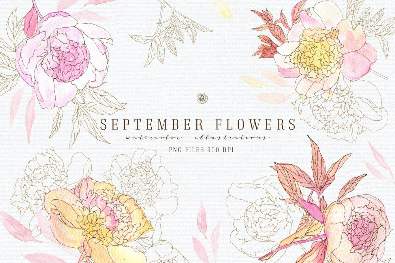 九月花花卉手绘水彩画PNG透明图片素材 September Flowers vol. 2插图