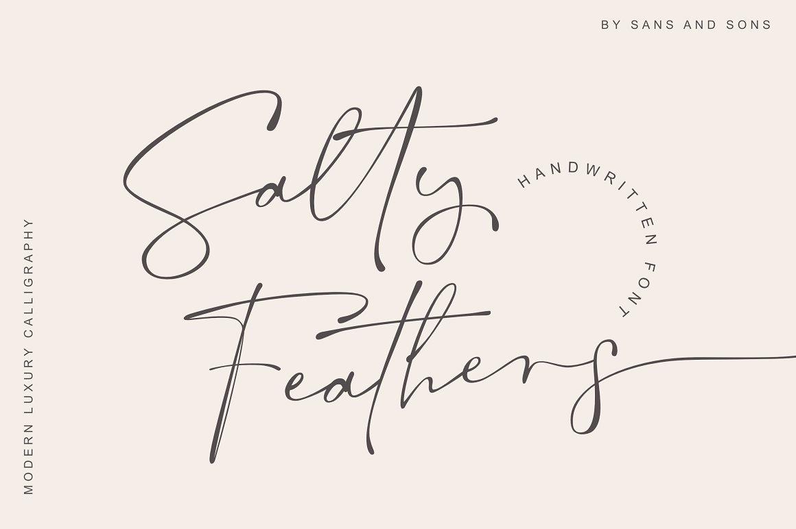 现代优雅标题品牌Logo设计大写手写签名英文字体素材 Salty Feathers – Modern Script插图