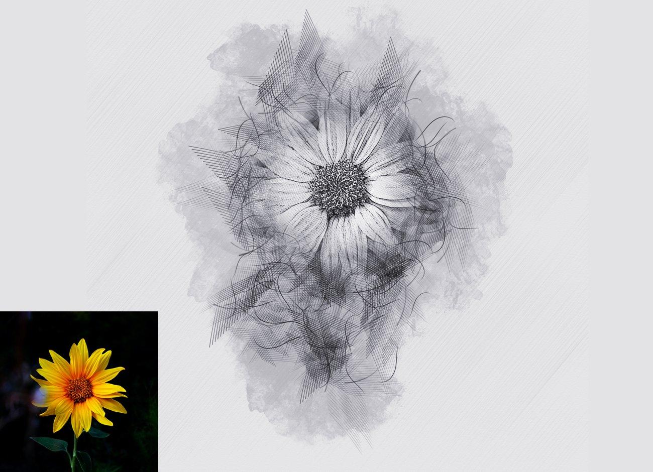 铅笔手绘素描效果照片处理特效PS动作模板 Hand Drawing Sketch Photoshop Action插图12