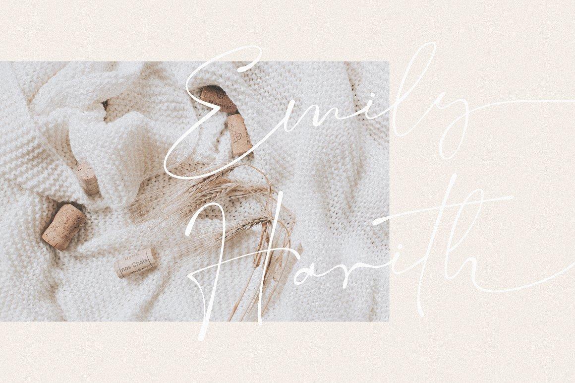 现代优雅标题品牌Logo设计大写手写签名英文字体素材 Salty Feathers – Modern Script插图8