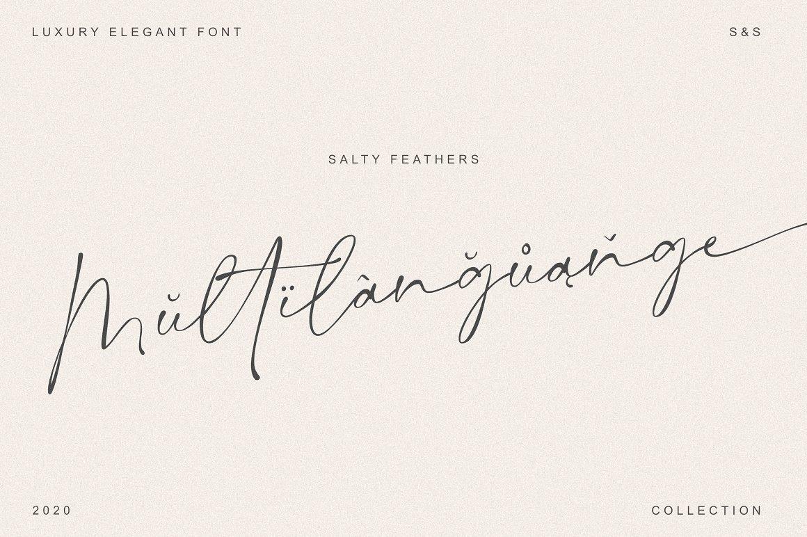 现代优雅标题品牌Logo设计大写手写签名英文字体素材 Salty Feathers – Modern Script插图9