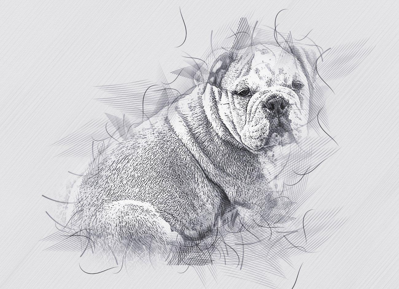 铅笔手绘素描效果照片处理特效PS动作模板 Hand Drawing Sketch Photoshop Action插图11