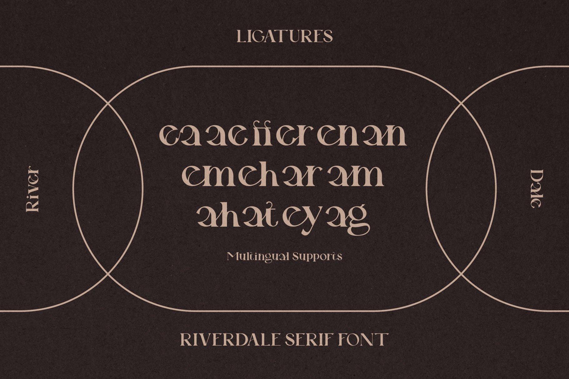 时尚优雅品牌Logo海报标题设计衬线英文字体素材 Riverdale Serif Font插图13
