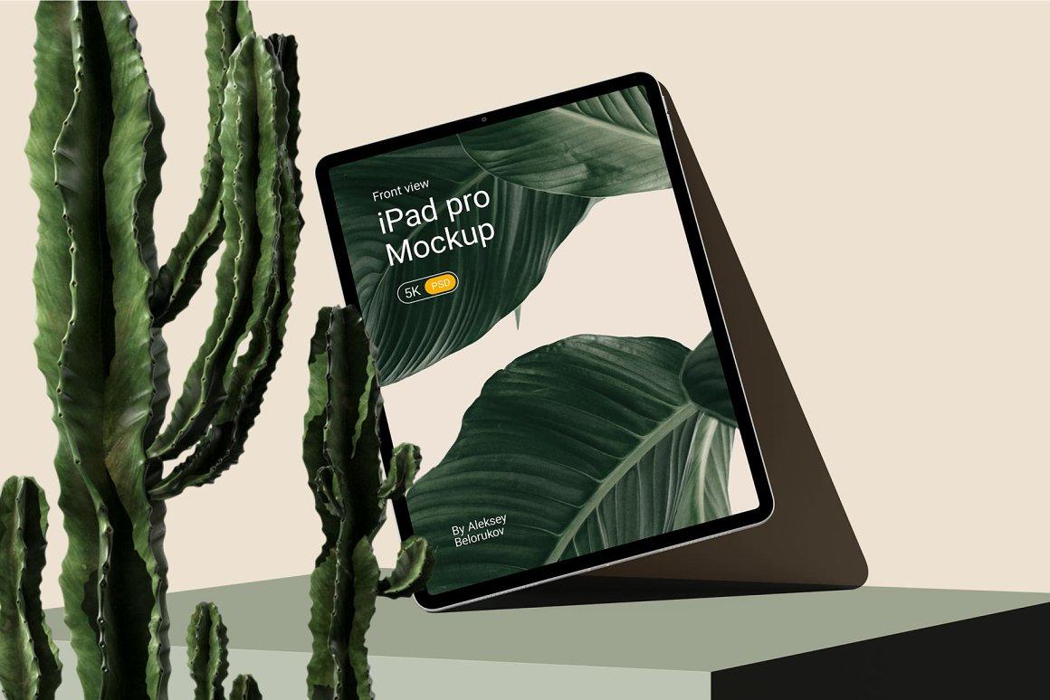 [单独购买] 15个超清前视图网页APP界面设计苹果设备屏幕演示样机 Device Pack Mockups – Front View插图3