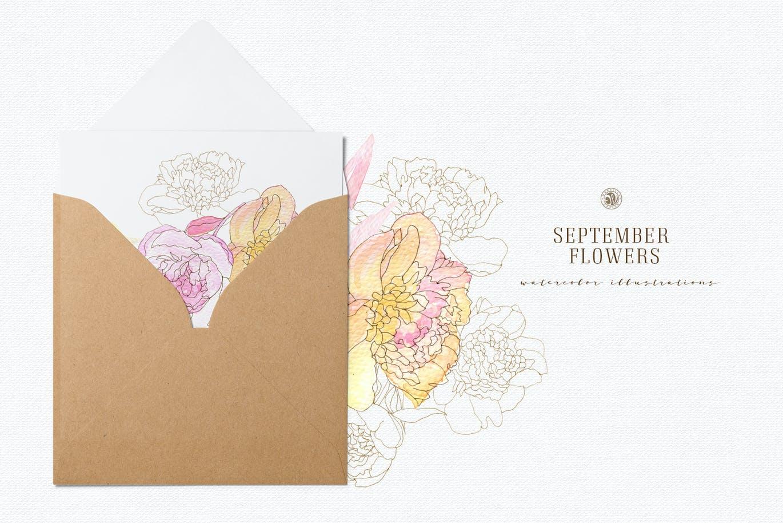 九月花花卉手绘水彩画PNG透明图片素材 September Flowers vol. 2插图3