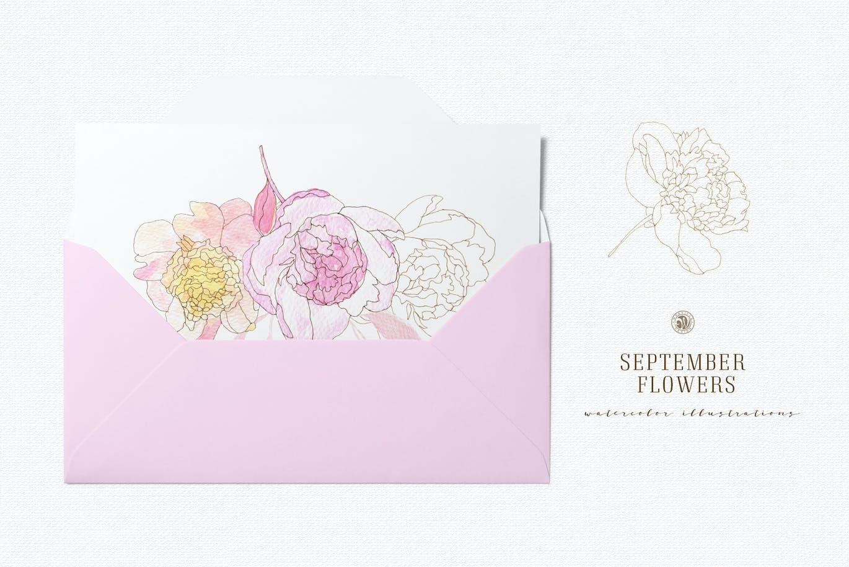 九月花花卉手绘水彩画PNG透明图片素材 September Flowers vol. 2插图4