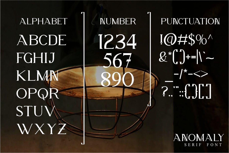 现代优雅海报标题徽标Logo设计大写衬线英文字体素材 Anomaly Modern Serif Font插图4
